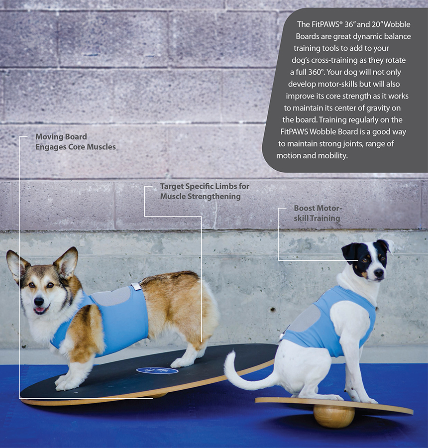 Balance Board Exercises Benefits: FitPAWS® Wobble Board
