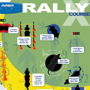 FitPAWS RallyX-course