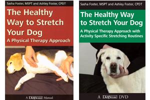 -healthy-way-stretch-dog