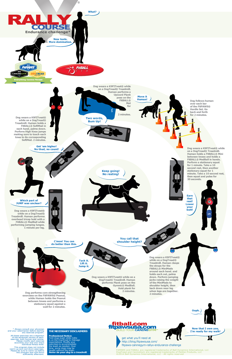 FitPAWS-FitBALL-CanineGym-RallyX-endurance-challenge