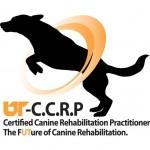 Logo-CCRPGraduates-large-150x150