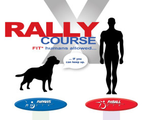 FitPAWS FitBALL- RallyX-course Human and Caninetness