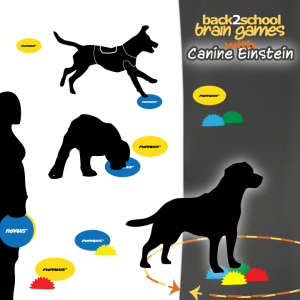 FitPAWS Paw Pods and Targets for Canie Brain Games