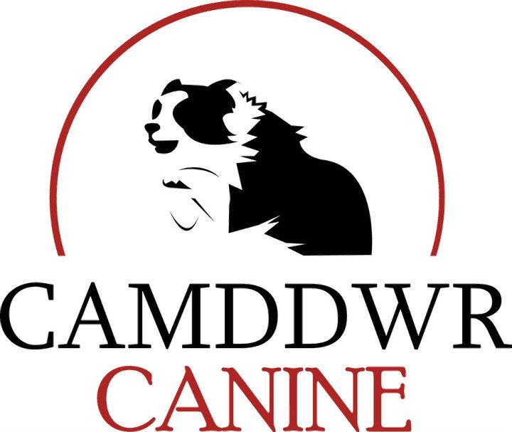 camddwr-logo
