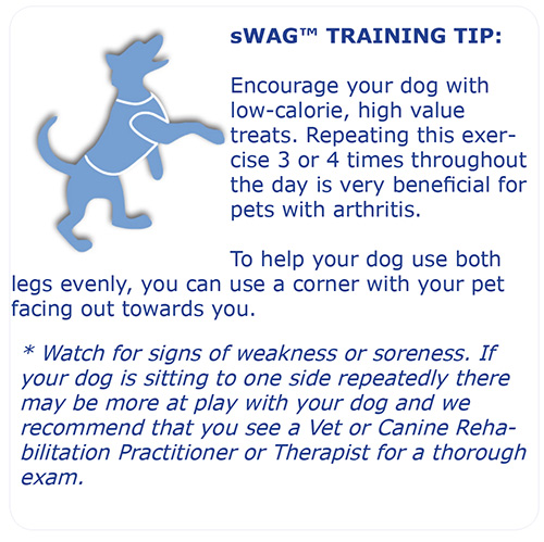 sWag_Training_Tip