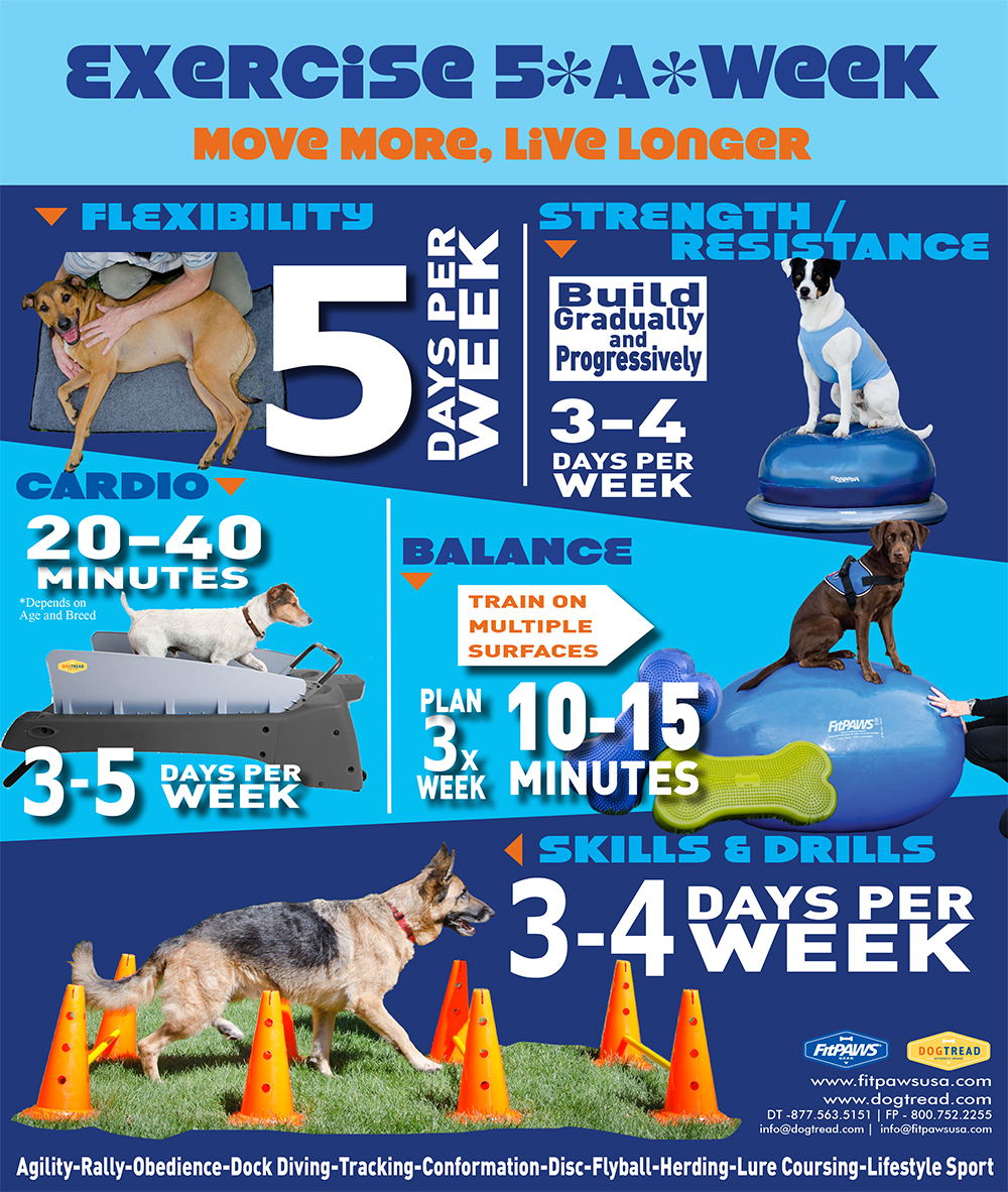 Dog-Exercise-5-a-Week--infographic