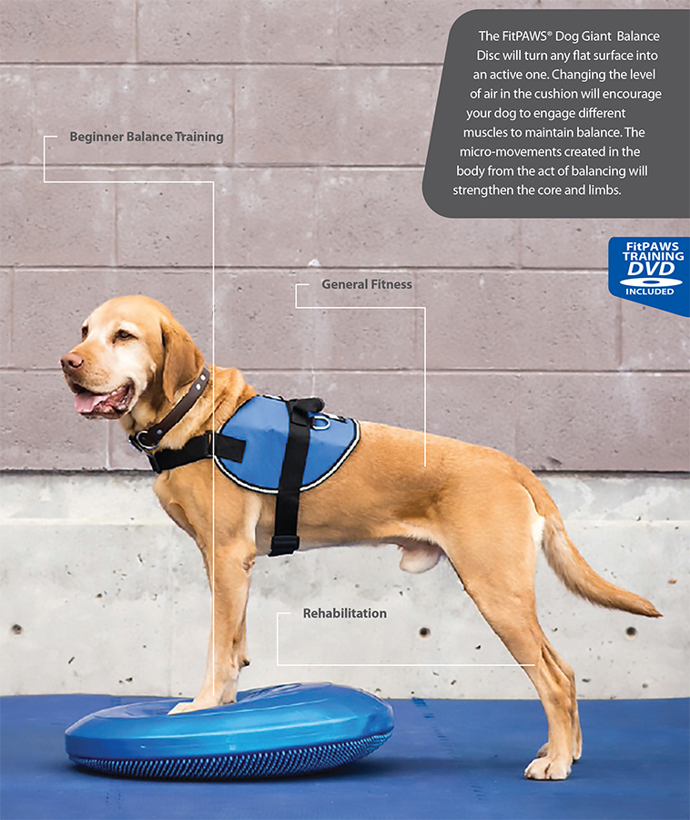FitPAWS Balnce Disk for Dogs