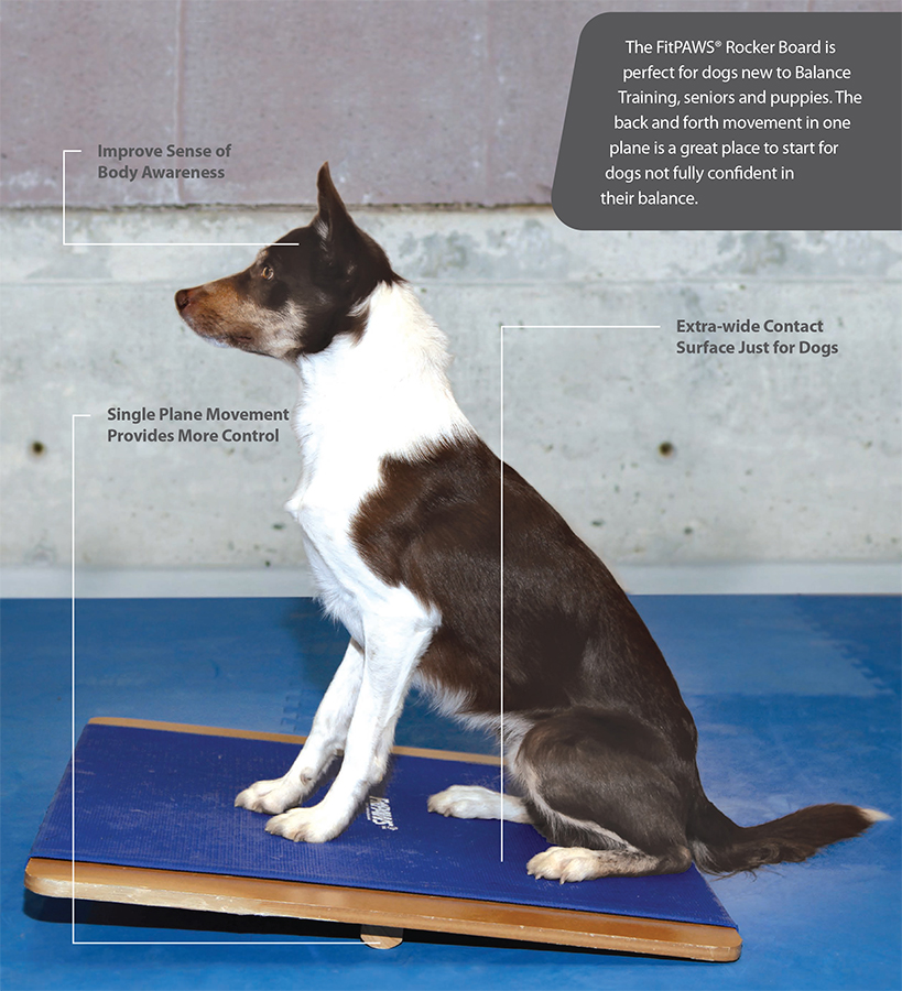 Dog Balance FitPAWS_RockerBoard2-Info