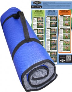 CanineGym K9FitBED with stretching poster