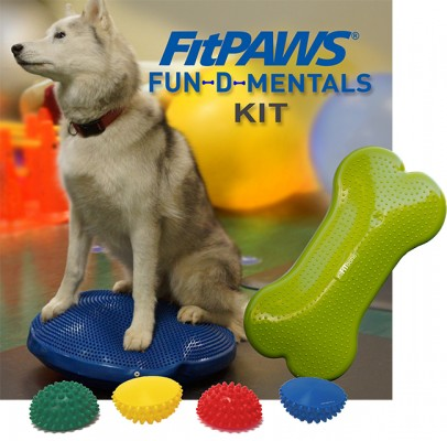 FitPAWS FUN-D-MENTAL KIT