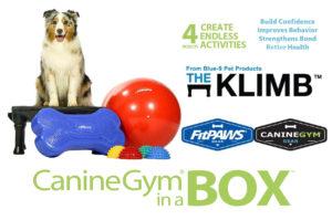 caninegyminabox