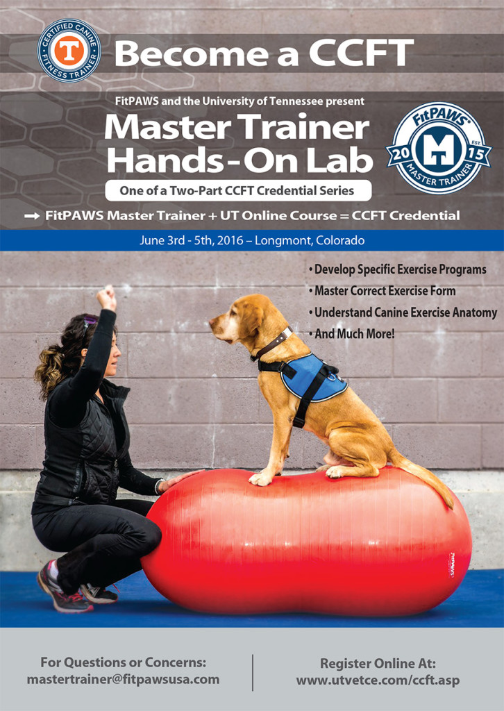 JUNE-Mastertrainer_flyer