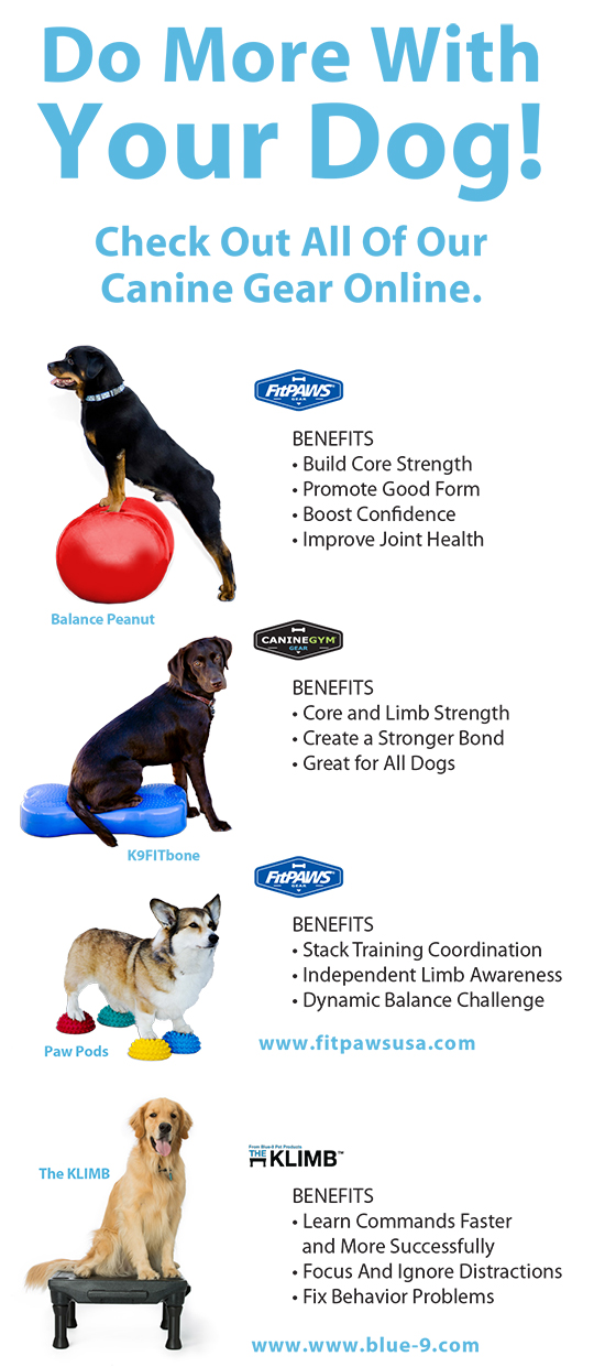 CanineGym in a Box