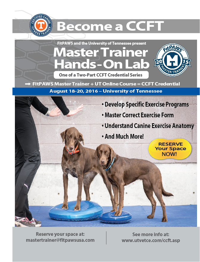 Mastertrainer_flyer-AUG-SM