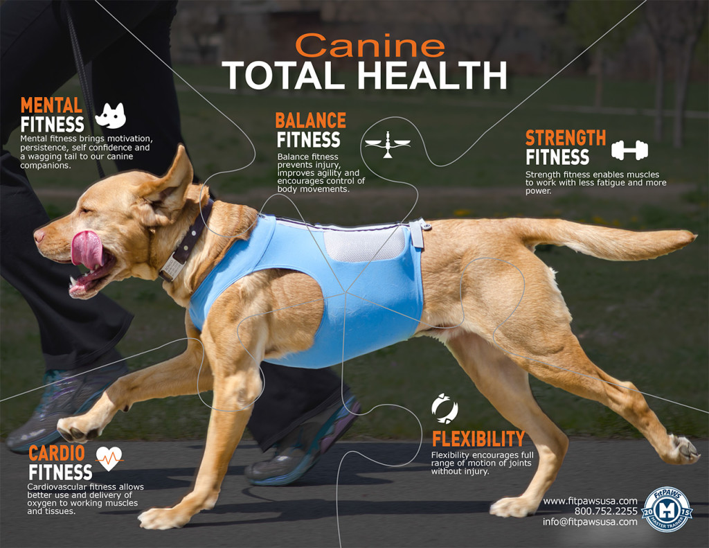 Canine-Total-Health-Puzzle