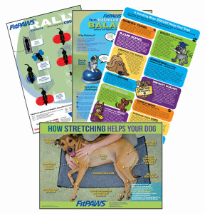 FitPAWS_Poster-group-small