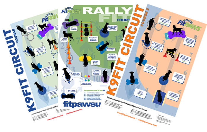 FitPAWS Exercise Infographic Posters