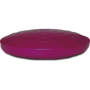 FitPAWS® Balance Disc 14″