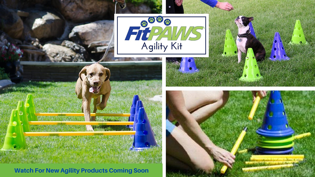 FitPAWS Agility Kit - Watch for New Agility Products